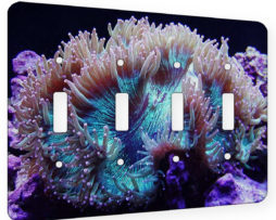 Anenome Beauty - 4 Gang Switch Plate