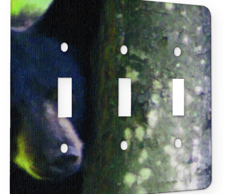 Black Bear Peek - 3 Gang Switch Plate