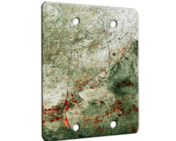 Adventure - 2 Gang Blank Wall Plate Cover