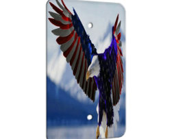 American Eagle Flag - 1 Gang Blank Wall Plate Cover