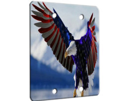 American Eagle Flag - 2 Gang Blank Wall Plate Cover