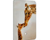Giraffe Kisses - 1 Gang Blank Wall Plate Cover